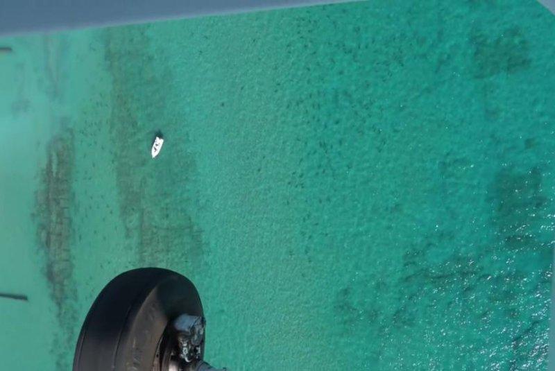 Tens of thousands of sharks gather off the coast of Palm Beach County, Fla. Screenshot: FAU Shark Mirgation/Facebook