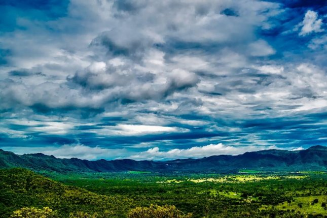 Roughly 13 percent of the world's intact forests are in Brazil. Photo by Pixabay/CC