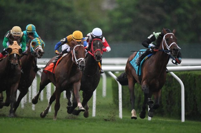 Hi Happy (yellow cap) en route to victory in Saturday's Grade I Man o' War at Belmont Park. Photo courtesy of Robert Mauhar/NYRA