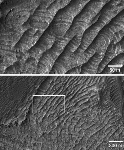 Images from the High Resolution Imaging Science Experiment on NASA's Mars Reconnaissance Orbiter show exposed rock strata in periodic bedrock ridges on the floor of the West Candor Chasma on Mars. Credit: NASA