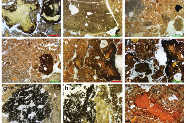 The collage of photos shows several of the fossilized animal droppings found in the Denisova Cave in Siberia. Photo by Mike Morley/Flinders University