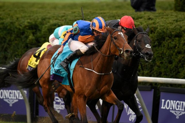 One last look back at the Breeders' Cup. Found (No. 9) holds off Golden Horn in a dramatic finish to the Longines Turf. Breeders' Cup photo