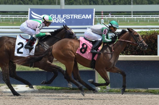Quinoa Tifah wins her career debut Thursday at Gulfstream Park. Photo by Lauren King, courtesy of Gulfstream Park