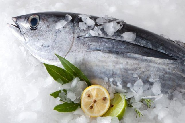 Rising water temperatures caused mercury levels in Atlantic bluefin tuna to increase by an estimated 56 percent since the 1970s, researchers say.Photo courtesy of HealthDay News
