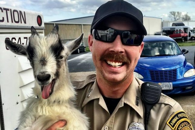 A goat makes a happy face for a photo with a Norfolk, Va., animal control officer. Photo by Norfolk Police Department/Facebook