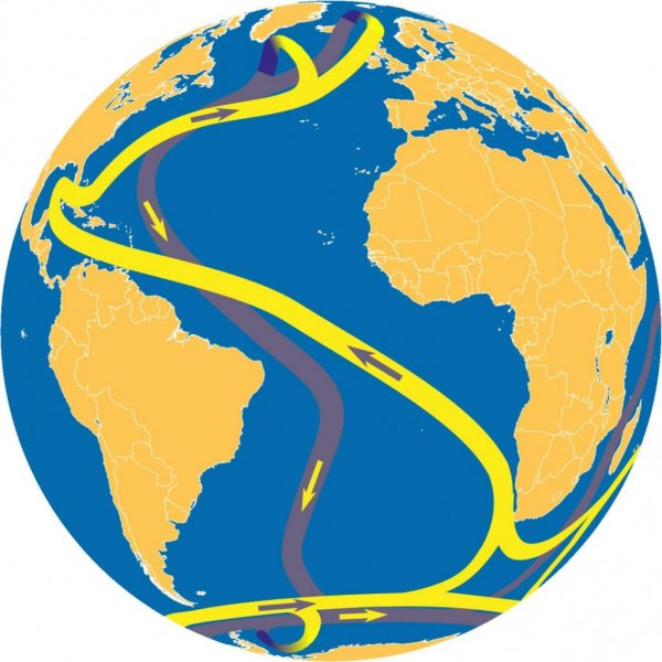 The Atlantic Ocean Curiculation, illustrated moving north in yellow and south in gray, transports relatively warm water from the Gulf of Mexico to north-western Europe. Illustration by Sven Baars/University of Groningen