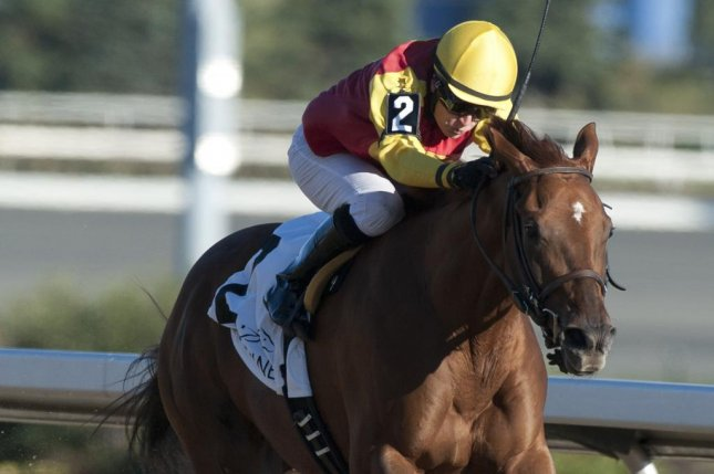 Dragon's Cry wins the Monday Bull Page Stakes at Woodbine, giving jockey Sheena Ryan her first stakes win. Photo courtesy of Woodbine