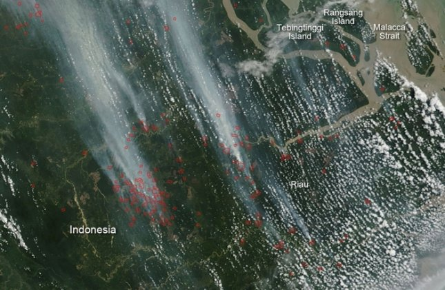 Wildfire in Indonesia. Credit: NASA