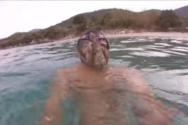 A snorkeler ends up with an octopus latched to his face mask. Screenshot: nikolaoskeppe/YouTube