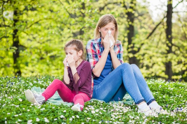 The only way to treat allergies is with targeted immunotherapy that can cause serious side effects, but researchers think they've found a way to reduce the risk. Photo by Mladen Mitrinovic/Shutterstock