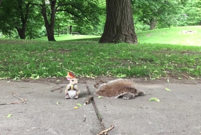 A wary squirrel investigates a squirrel statue with bread on its head. Screenshot: Storyful
