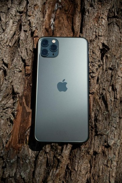 Fatemeh Ghodsi of Vancouver, British Columbia, was reunited with her iPhone 11 after it spent six months at the bottom of Lake Harrison. The phone was recovered by diversClayton and Heather Helkenberg, who discovered the device still worked. Photo byaixklusiv/Pixabay.com
