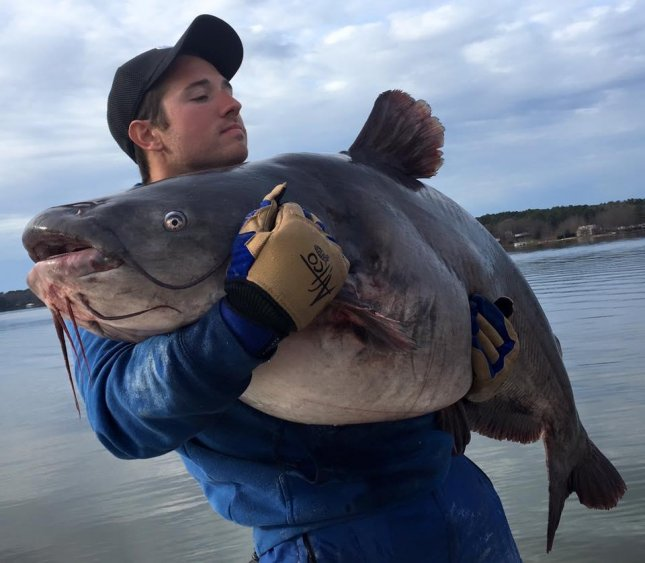 North carolina man catches two record catfish in 18 hours for Lake gaston fishing