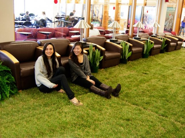 Indoor lawn in university library. Credit: Cornell University