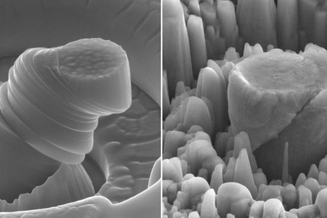 A close-up image shows magnesium before and after the introduction of ceramic nanoparticles. Photo by UCLA/Li