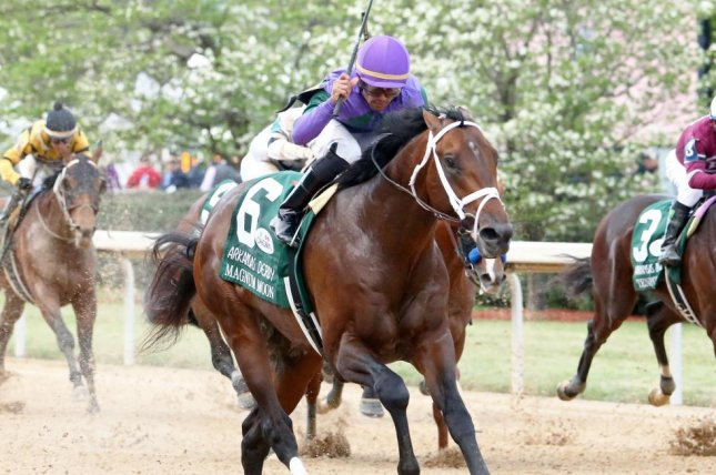 Magnum Moon wins Saturday's Arkansas Derby, remaining undefeated as he heads for the Kentucky Derby. Photo courtesy of Oaklawn Park