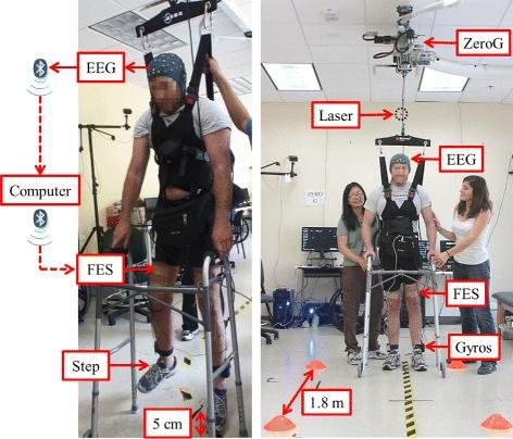 "Left: The suspended walking test. In response to ""Idle"" or ""Walk"" cues displayed on a computer screen, the participant modulates his EEG by idling or attempting to walk. EEG is sent wirelessly, using Bluetooth communication protocol, to the computer, which processes the data and wirelessly sends a decision to either ""Idle"" or ""Walk"" to a microcontroller. The microcontroller, placed in the belt-pack, drives the FES of the femoral and deep peroneal nerves to perform either FES-mediated standing or walking in place. Right: The overground walking test. In response to verbal cues, the participant performs BCI-FES mediated walking and standing to walk along a linear course and stop at three cones positioned 1.8 m apart. The basic components are: the BCI-FES system, motion sensor system -- two gyroscopes and a laser distance meter -- and the ZeroG body weight support system to prevent falls. The information flow from EEG to FES is identical to that of the suspended walking test. Photo by University of California Irvine"