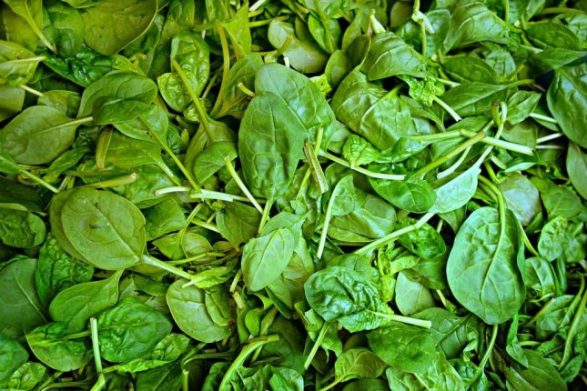 A semi rollover on Interstate 71 in Ohio caused a load of spinach to be spilled across multiple lanes, police said. Photo by MabelAmber/Pixabay.com