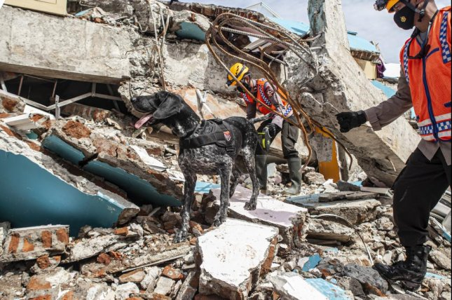 Members of the K-9 unit from the Indonesian National Police search for victims Monday in the ruins of a building damaged by a 6.2-magnitude earthquake, in Mamuju, West Sulawesi, Indonesia. Photo by Opan Bustan/EPA-EFE
