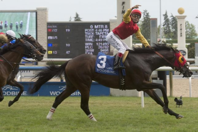 Eurico Da Silva celebrates as Up With the Birds wins Sunday's Nijinsky Stakes at Woodbine. (Woodbine photo)