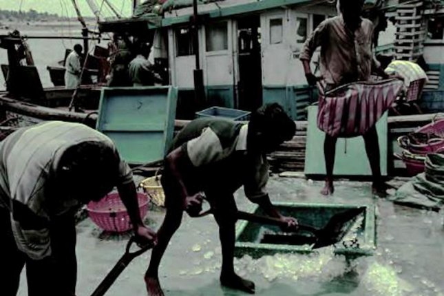 Modern slavery is characterized by migrants and trafficked laborers subjected to long hours, low pay and debt bondage. Many abused workers end up on fishing vessels. Photo by ILO/Sea Around Us