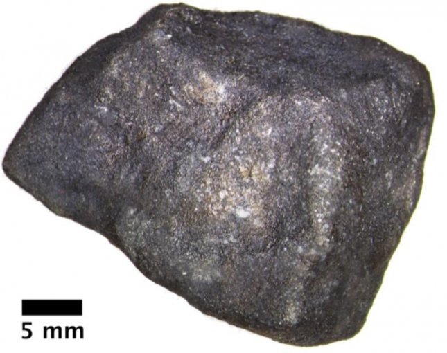 The meteorite fragment that fell on Strawberry Lake, near Hamburg, Mich., contains pristine extraterrestrial organic compounds, according to researchers. Photo by Field Museum