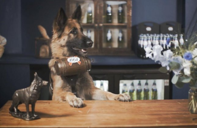 French beer company Kronenbourg 1664 is set to open a pop-up bar staffed entirely by German Shepherds in London on Friday. The dogs will deliver the company's beer for free in custom lightweight barrels to guests who reserve two-hour sessions.  Screen capture/Kronenbourg1664/YouTube