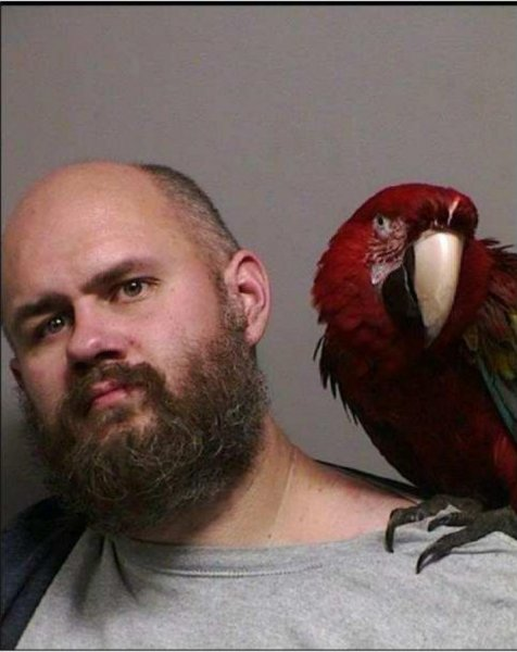 Craig Buckner's macaw parrot, Bird, poses with him for a mugshot after he brought the pet with him to court. Photo courtesy of the Washington County Sheriff's Office
