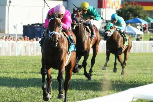 Zulu Alpha, shown winning last year's Kentucky Turf Cup, returns to Kentucky Downs on Saturday to try for a repeat in the $1 million race. Coady Photography, courtesy of Kentucky Downs
