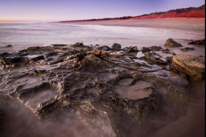 Dinosaur tracks fill with water along Australia's Dampier Peninsula coastline. Photo Damian Kelly/University of Queensland