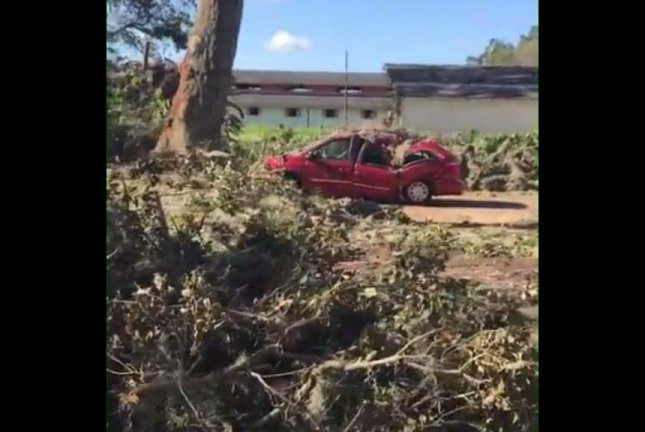 A minivan drives off after being freed from the tree that fell on it during Hurricane Matthew. Screenshot: Storyful