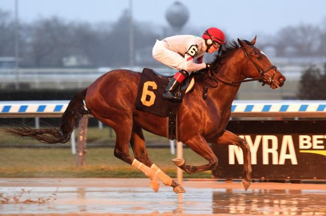 Blindwillie McTell wins Sunday's Great White Way Division of the New York Stallion Stakes at Aqueduct. Photo courtesy of Chelsea Durand/NYRA
