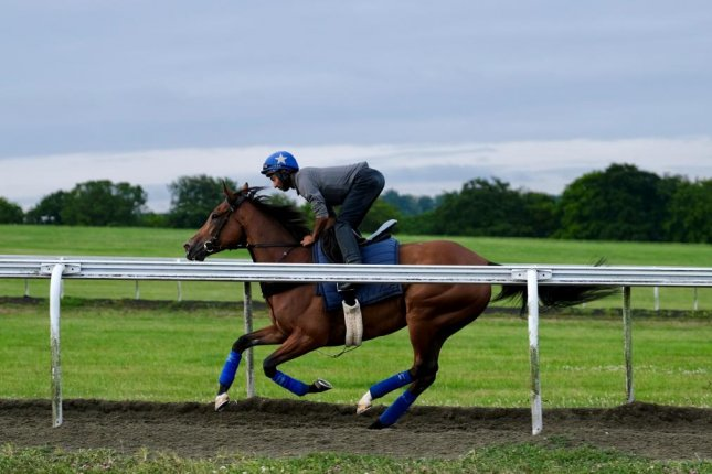 Two-time Arc winner Enable stretches her legs over the Newmarket gallops in preparation for Saturday's Group I King George VI and Queen Elizabeth Stakes at Ascot. Photo courtesy of Ascot Racecourse
