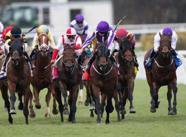 Mendelssohn (purple and white), seen winning the 2017 Breeders' Cup Juvenile Turf, seeks redemption for his last-place finish in the Kentucky Derby when he returns in Saturday's Dwyer Stakes at Belmont Park. (Breeders' Cup photo)