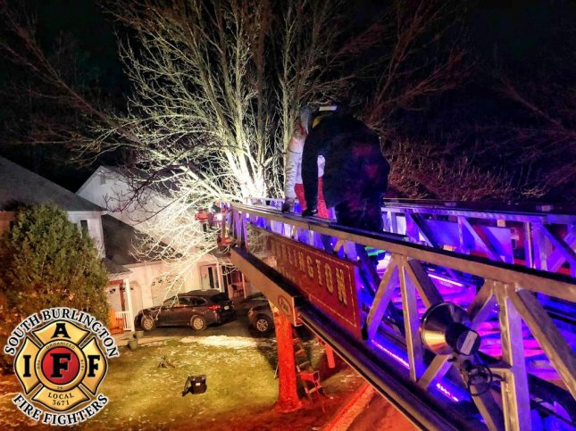 Firefighters in Vermont rescued a cat and its owner after they both became stuck in a tree. Photo courtesy of the South Burlington Fire Department