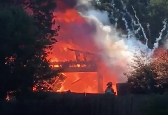 Man battling wasps accidentally burns down garage in MI