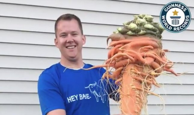 Minnesota gardener Christopher Qualley set the Guinness World Record for world's largest carrot with his 22.44-pound veggie. Screen capture/Guinness World Records/Twitter