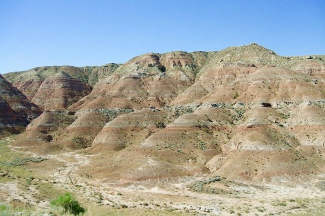 Researchers found evidence of mammalian dwarfism in fossils collected from Wyoming's fossil-rich Bighorn Basin, which they think was caused by hyperthermal periods of Earth's history. Photo by University of New Hampshire