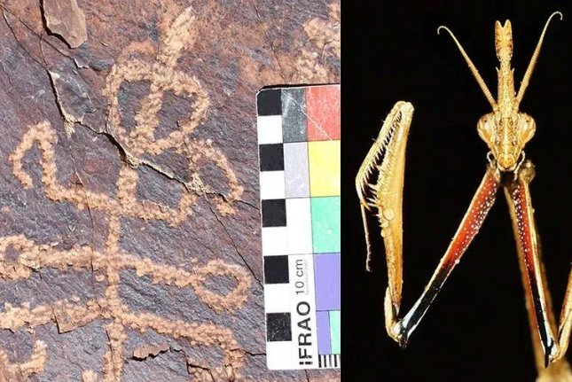 Scientists found an ancient half-mantid figure at an Iranian rock art site. Photo by Pensoft Publishers