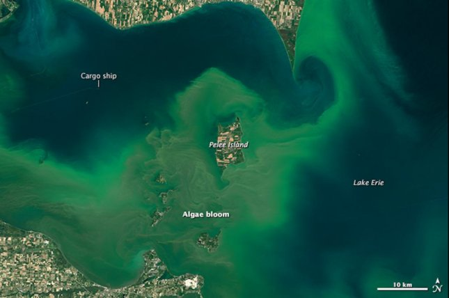 Scientists used satellite images to track changes in the size and growth patterns of algal blooms in Earth's largest lakes over the last 30 years. Photo by NASA Earth Observatory/Landsat