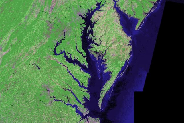 This summer's Chesapeake Bay dead zone is expected to be larger than normal. Photo by Landsat/NASA