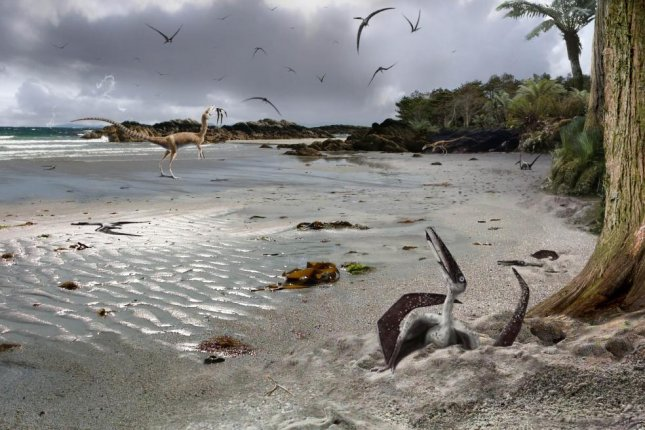 New research suggests pterodactyls were born ready to fly. Photo by James Brown/University of Leicester