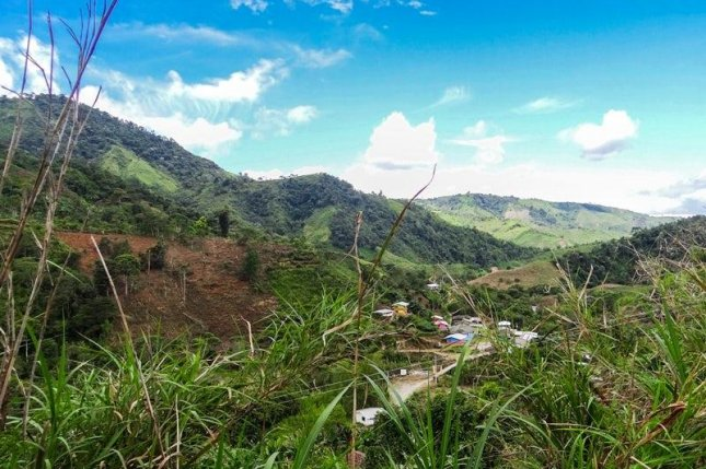 The Intag cloud forest region in Ecuador has seen a slew of mining companies come in and out of the area since the early 1990s. Photo by Naomi Renee Cohen
