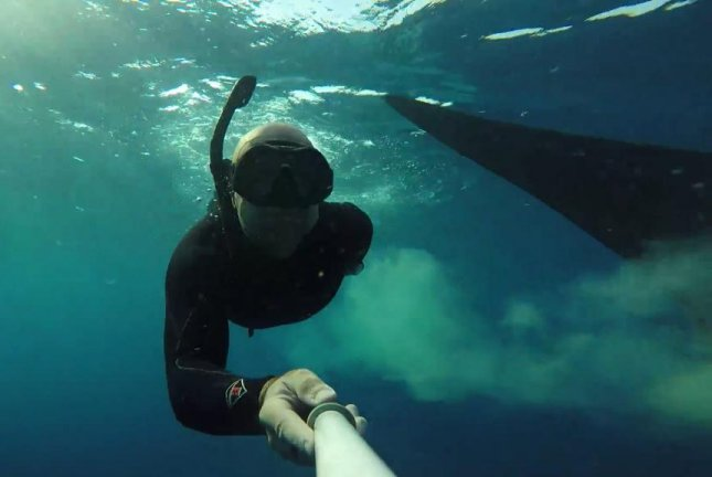 A diver gets pooped on by a whale shark in Mexican waters. Screenshot: Newsflare