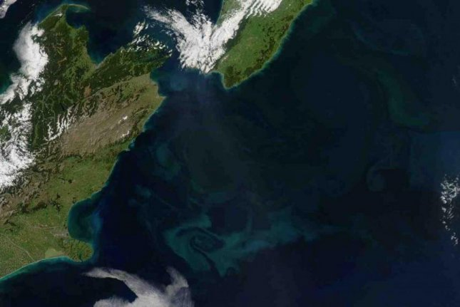 Blooms of coccolithophores off the eastern shores of New Zealand turn the seas a milky green. Photo by Jeff Schmaltz/MODIS Land Rapid Response Team/NASA/GSFC
