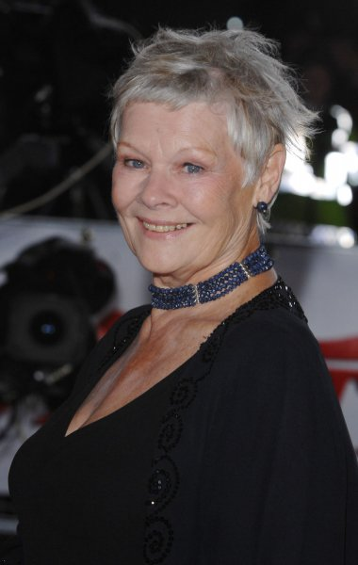 British actress Judi Dench attends the National Movie Awards at Royal Festival Hall in London on September 28, 2007. (UPI Photo/Rune Hellestad)