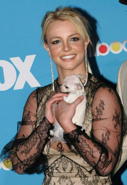 Britney Spears holds her dog 'Bit Bit' as she arrives for the 2004 Billboard Music Awards at MGM Grand in Las Vegas, December 8, 2004. (UPI Photo/Roger Williams)