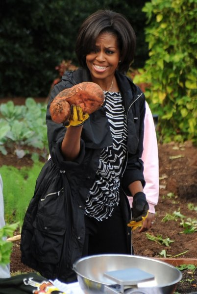 First Lady Michelle Obama holds a sweet potato as she participates in a fall garden harvest with students from local D.C. schools in the White House Garden in Washington on October 20, 2010. UPI/Kevin Dietsch