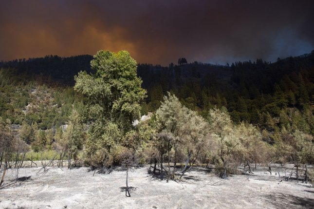 The sunlight shines in under a heavy plume of smoke billowing from the Dixie fire above the Plumas National Forest in Plumas and Butte Counties on Wednesday, July 21, 2020. The Dixie Fire and the Tamarack Fires slowed down Saturday.  Photo by Peter DaSilva/UPI