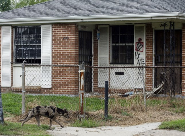 A stray dog walks past a home in the Lower Ninth Ward of New Orleans August 27, 2010. The area was devastated five years ago when Hurricane Katrina swept through the area, causing widespread damage and submerging the city. UPI/A.J. Sisco